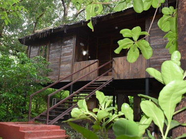 Hotels and Resorts in Pench National Park, Pench Wildlife